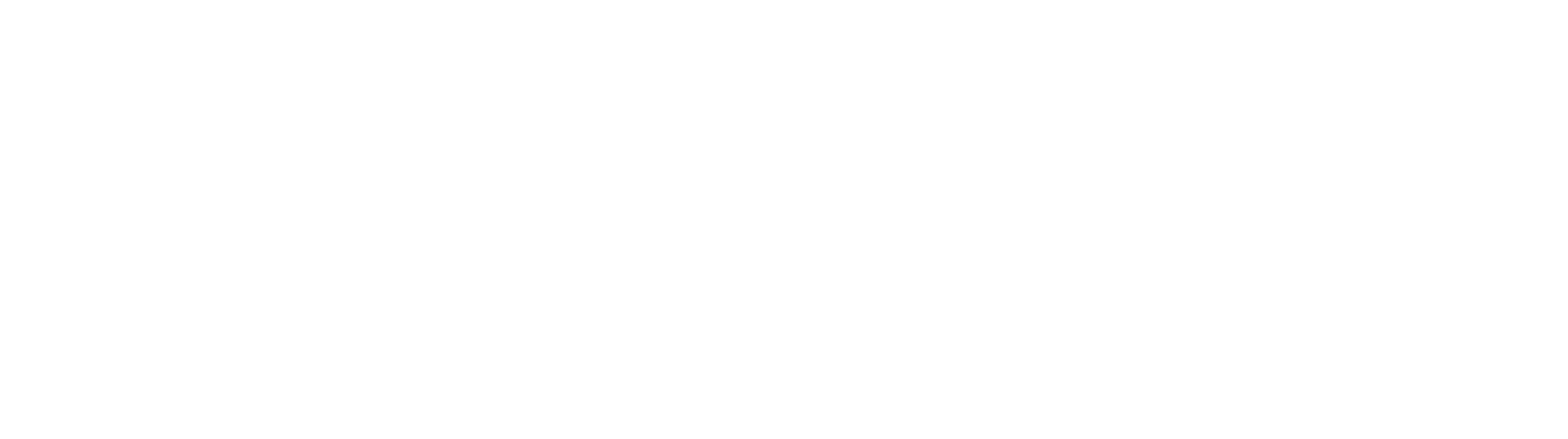 Anderson Bright logo wit